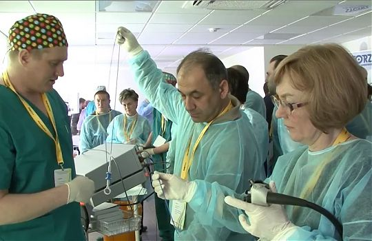 Endoscopic hands-on session (Saint-Petersburg, April 2015)